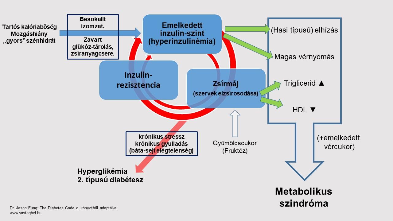 zsírégetést nem glükóz)